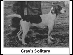 Gray's Solitary